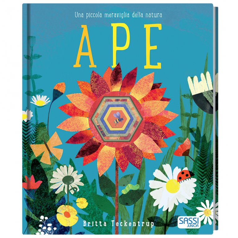 SASSI EDITORE PICTURE BOOK - APE