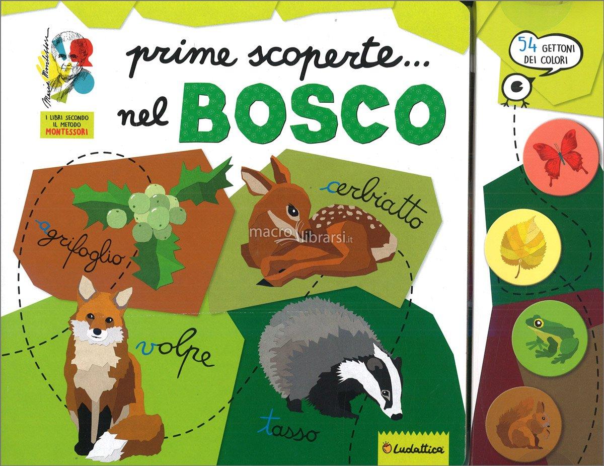 LISCIANI GIOCHI ALLA SCOPERTA... DEL BOSCO 12631 MONTESSORI